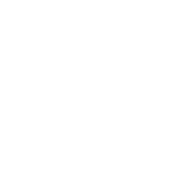 Rotary Your Exchange
